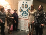 Espectacles a benefici de la protecció animal a Torrent